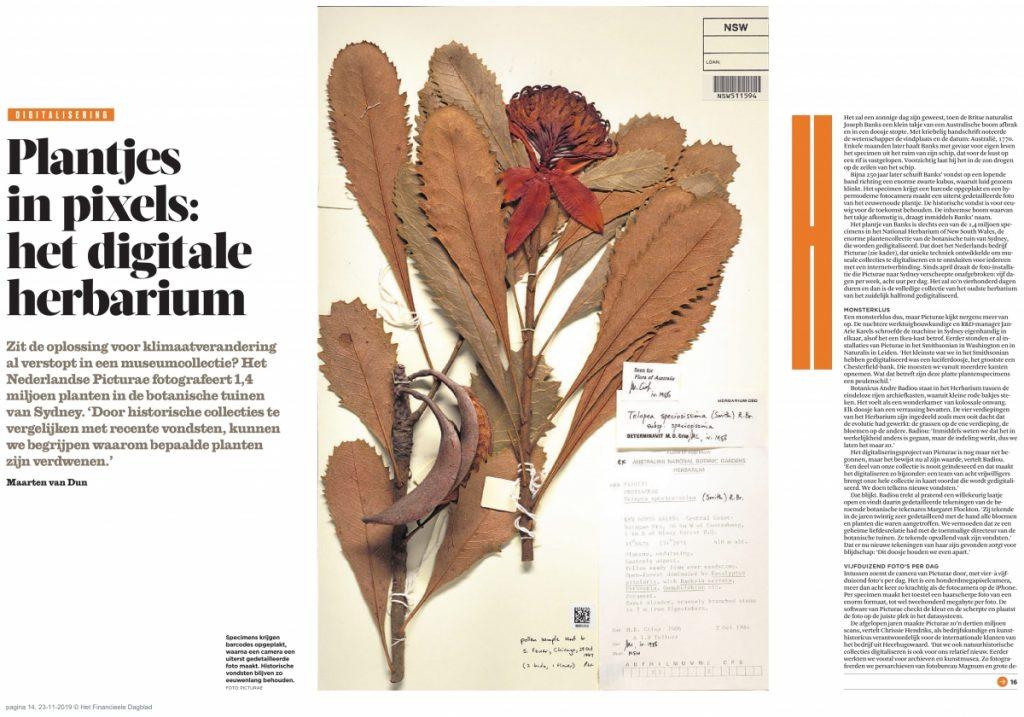 Financieel Dagblad Herbaria